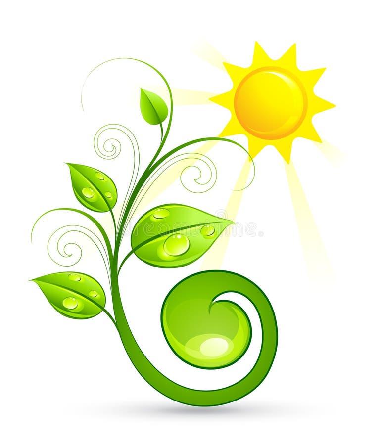 Planta verde y sol stock de ilustración