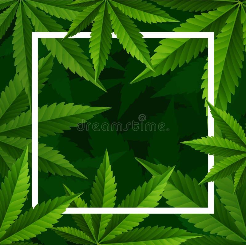 Planta y cáñamo de marijuana en fondo verde ilustración del vector