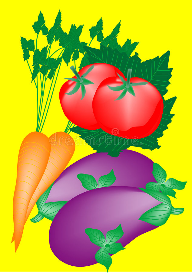 Plantaardig stock illustratie