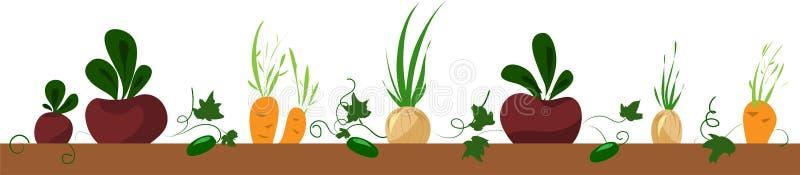 Plantaardig bed, kader met biet, wortel, ui vector illustratie