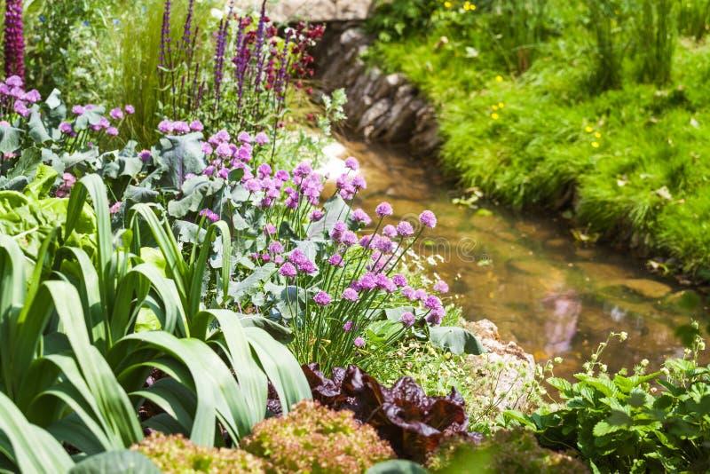 Plantaardig flard in een mooie tuin stock fotografie