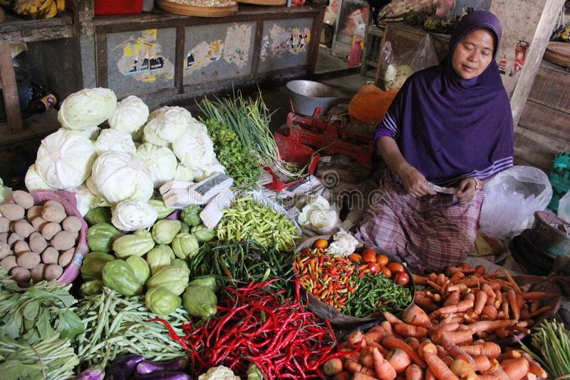 Plantaardig Indonesië royalty-vrije stock afbeelding