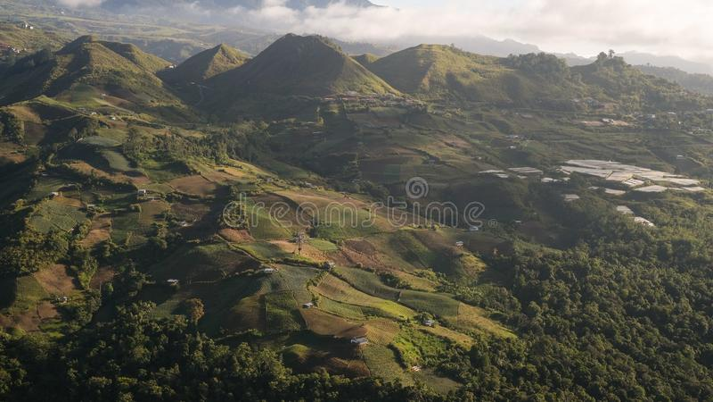 Plantaardig terras onder een berg royalty-vrije stock fotografie