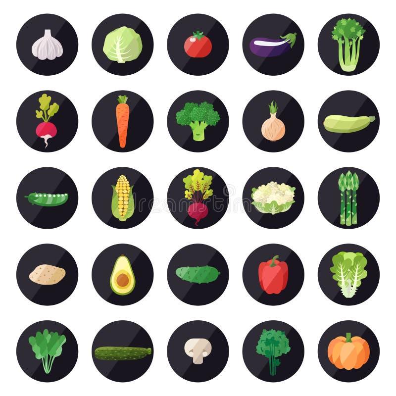 Plantaardige pictogrammen grote vectorreeks Modern vlak ontwerp stock illustratie