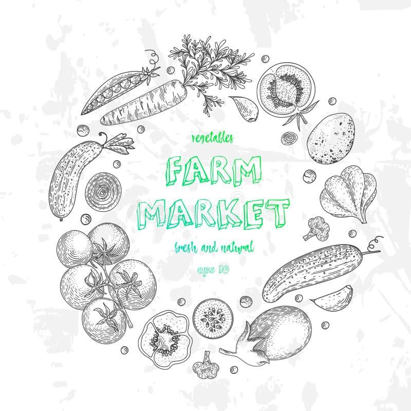 Plantaardige vectorcirkel met komkommer, tomaat, aubergine, aardappel, wortel, broccoli Het gezonde malplaatje van het voedselont royalty-vrije illustratie