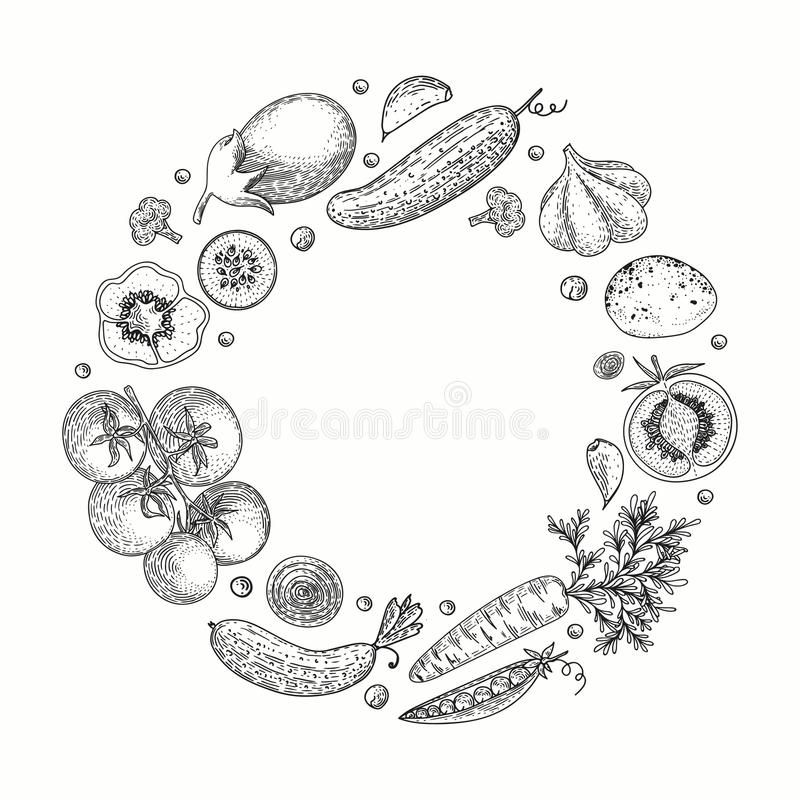 Plantaardige vectorcirkel met komkommer, tomaat, peper, aubergine, aardappel, erwten, wortel, broccoli Gezond voedselontwerp stock illustratie