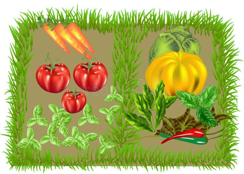 Plantaardige voedselachtergrond royalty-vrije illustratie