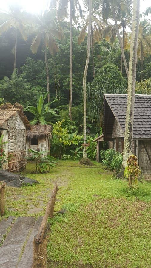 Plantación de los Cocos fotografía de archivo