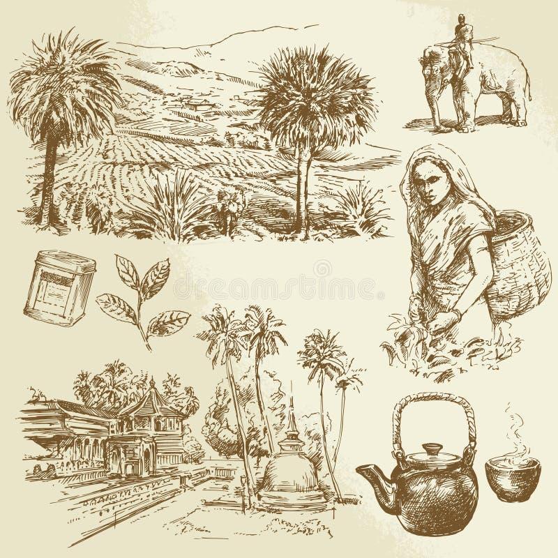 Plantaciones de té libre illustration