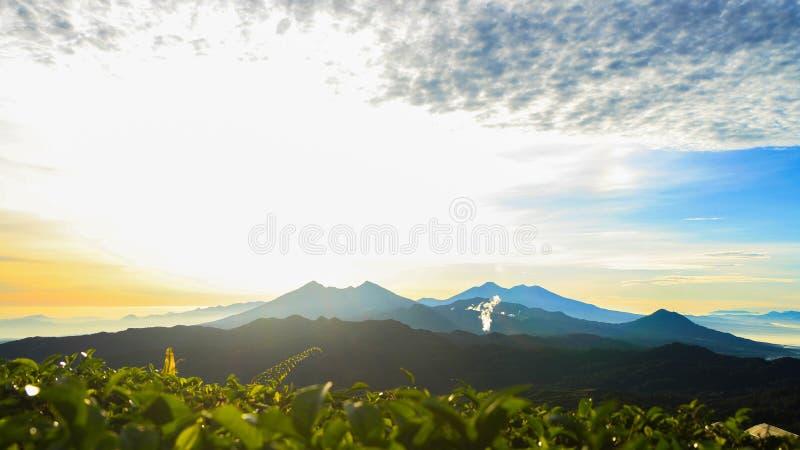 Plantaciones de té en Malasari, Bogor, Indonesia Escena de la salida del sol con la montaña de la silueta y el cielo azul fotos de archivo libres de regalías