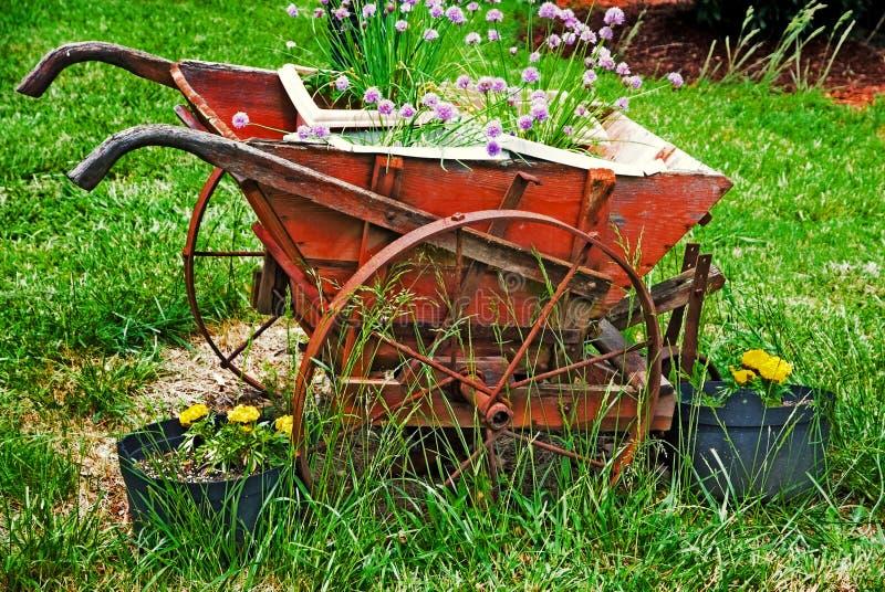 Plantador do Wheelbarrow foto de stock royalty free
