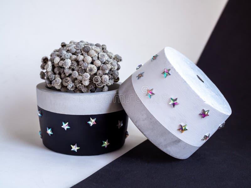 Plantadores concretos de la ronda moderna blanco y negro con la flor del vintage Potes concretos pintados para la decoración case fotografía de archivo libre de regalías