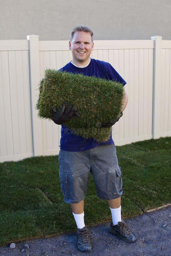 Plantando la nueva hierba del césped (trabajo de yarda) imagen de archivo