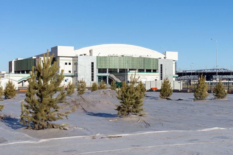 Plantando pinheiros perto do centro de esportes da arena do gelo da platina na cidade de Krasnoyarsk imagem de stock
