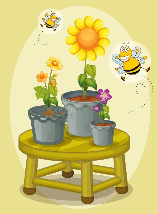 Plantas ilustração royalty free