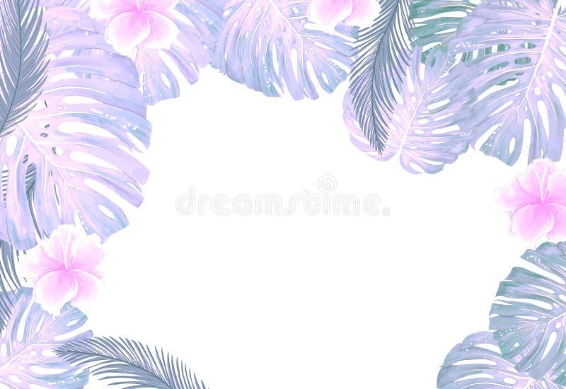 Plantas botânicas tropicais, folhas cor-de-rosa da cor do coco e folha da selva do cartão do projeto da banana no fundo branco ilustração royalty free