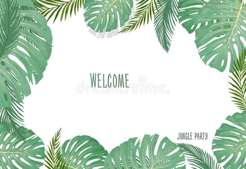 Plantas botânicas tropicais, fundo com as folhas do coco e folha da selva do cartão do projeto da banana no fundo branco ilustração stock
