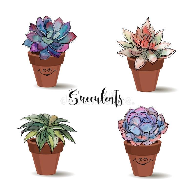 Plantas carnudas em uns potenciômetros de argila jogo Gráficos com aquarela Vetor ilustração stock