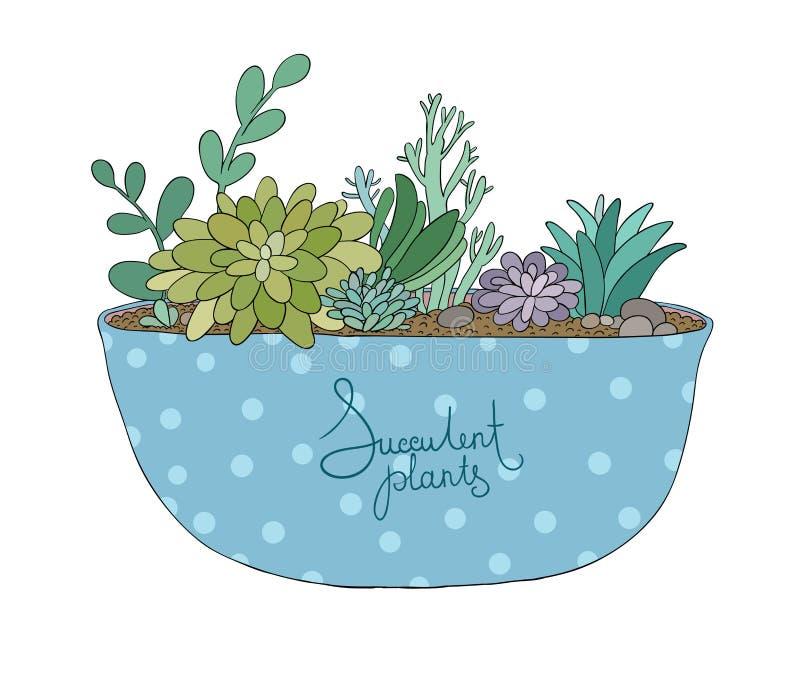 Plantas carnudas no potenciômetro Agave, aloés e cacto ilustração stock