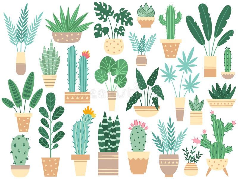 Plantas caseras en potes Houseplants de la naturaleza, houseplant en conserva de la decoración y planta de la flor plantando en v stock de ilustración