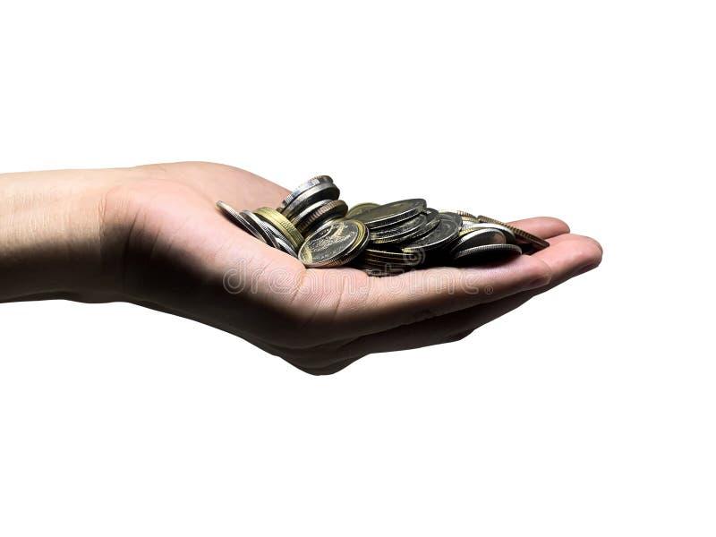 Plantas cultivadas con monedas de dinero por manos de mujeres - concepto de metáfora financiera y de negocios foto de archivo libre de regalías