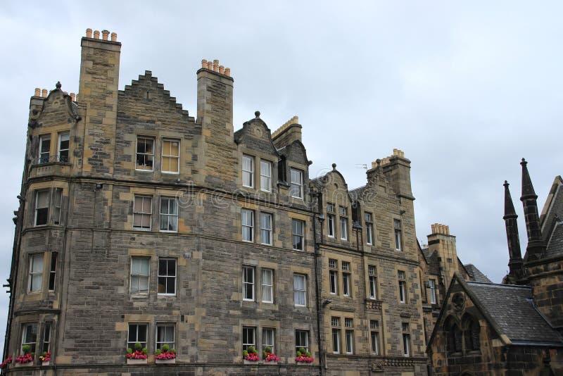 Plantas da arquitetura e da florescência na cidade Edimburgo em Escócia fotos de stock royalty free