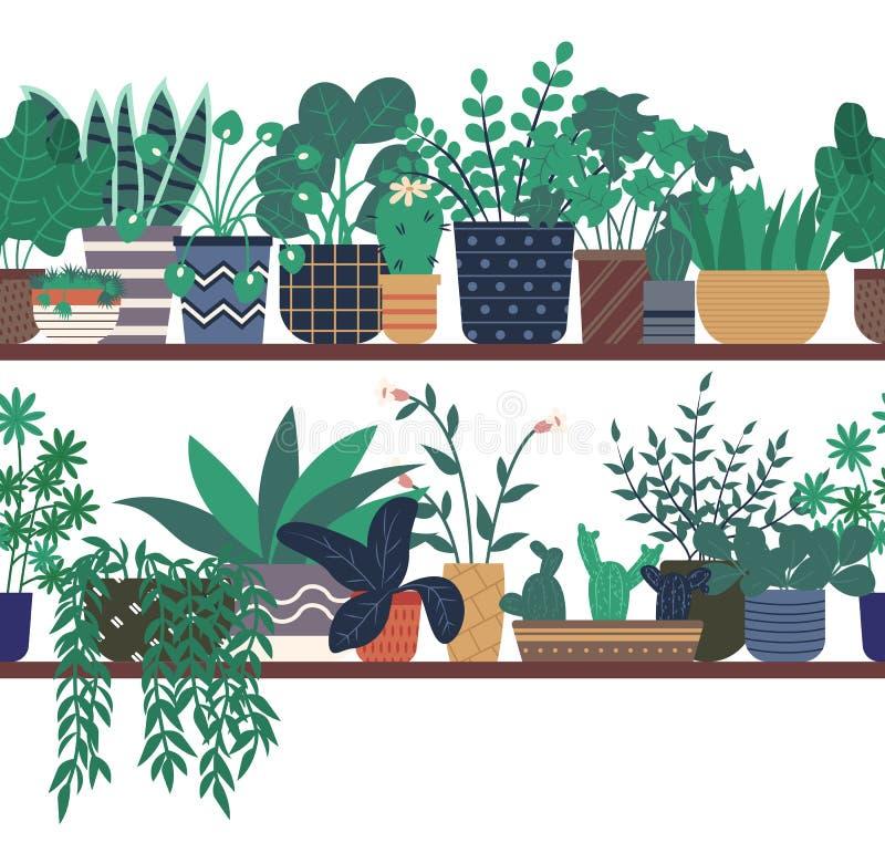 Plantas da casa que estão na estufa de madeira da prateleira ilustração do vetor