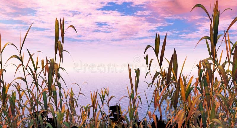 Plantas de agua stock de ilustración