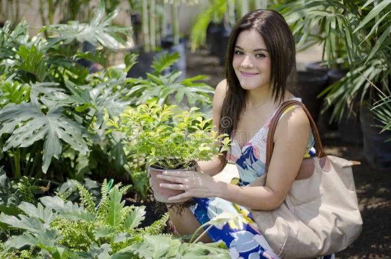Plantas de compra da jovem mulher bonito fotos de stock