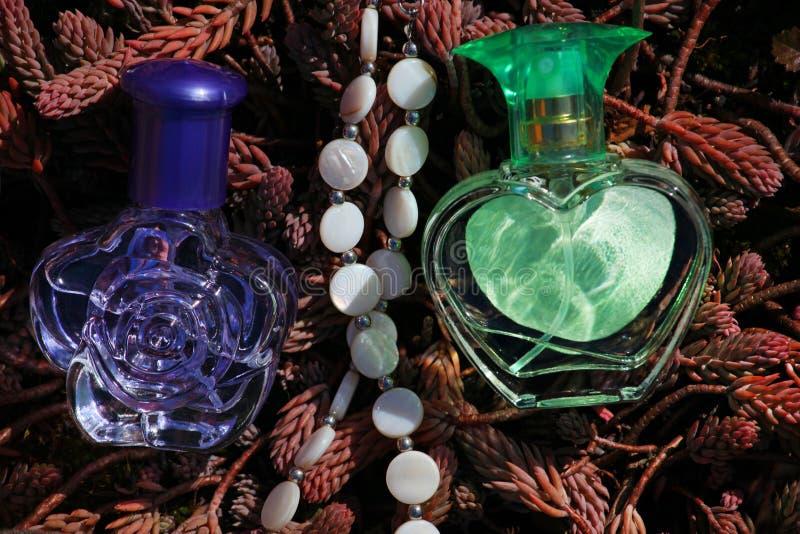 Plantas de cristal de la primavera de la botella de perfume imágenes de archivo libres de regalías