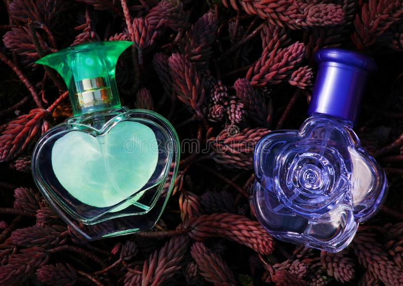 Plantas de cristal de la primavera de la botella de perfume foto de archivo