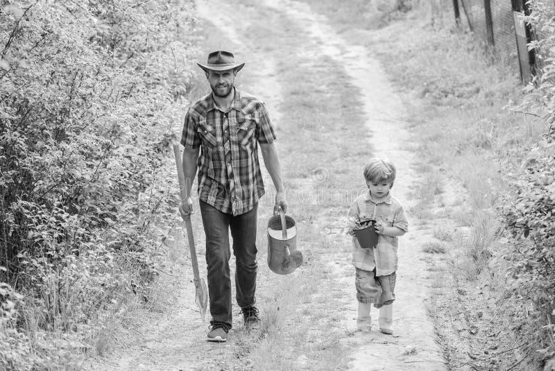 Plantas de ensino do cuidado do filho do paizinho Dia de mandril Plantando ?rvores Tradi??o da planta??o de ?rvores Pouco ajudant foto de stock