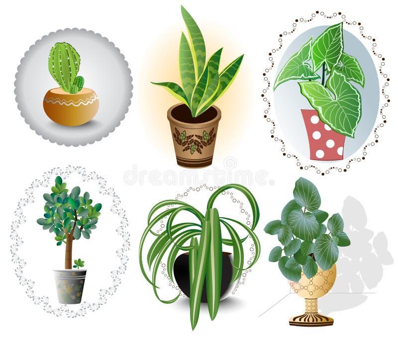 Plantas de la casa fijadas foto de archivo libre de regalías