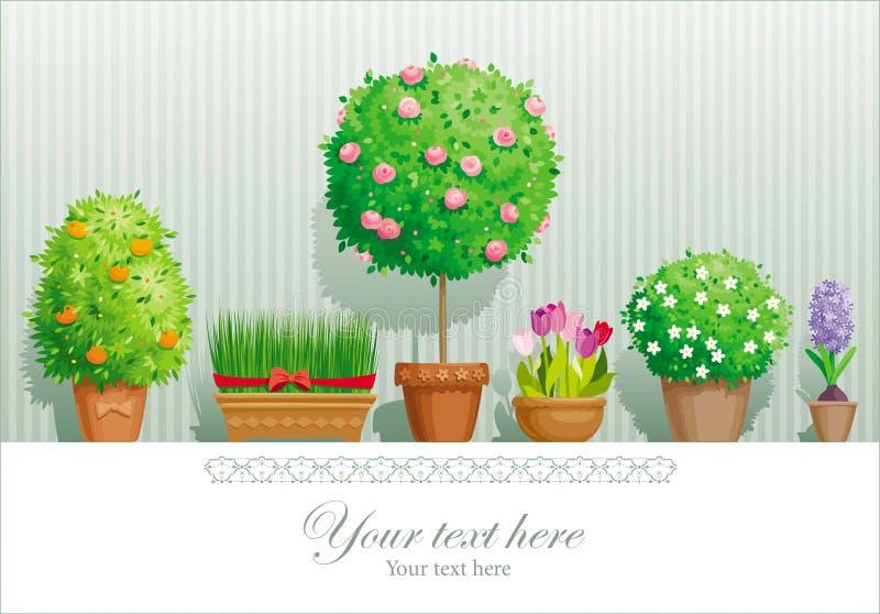 Plantas de potenciômetro ilustração royalty free