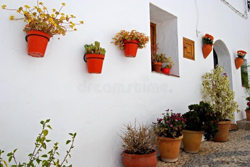 Plantas de potenciômetro na parede, Frigiliana, Spain. imagem de stock