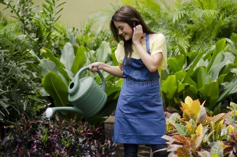 Plantas de riego femeninas del jardinero fotografía de archivo