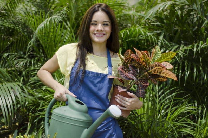 Plantas de riego femeninas del jardinero imagen de archivo libre de regalías