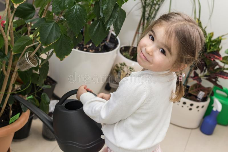 Plantas de riego lindas de la niña en su casa fotografía de archivo