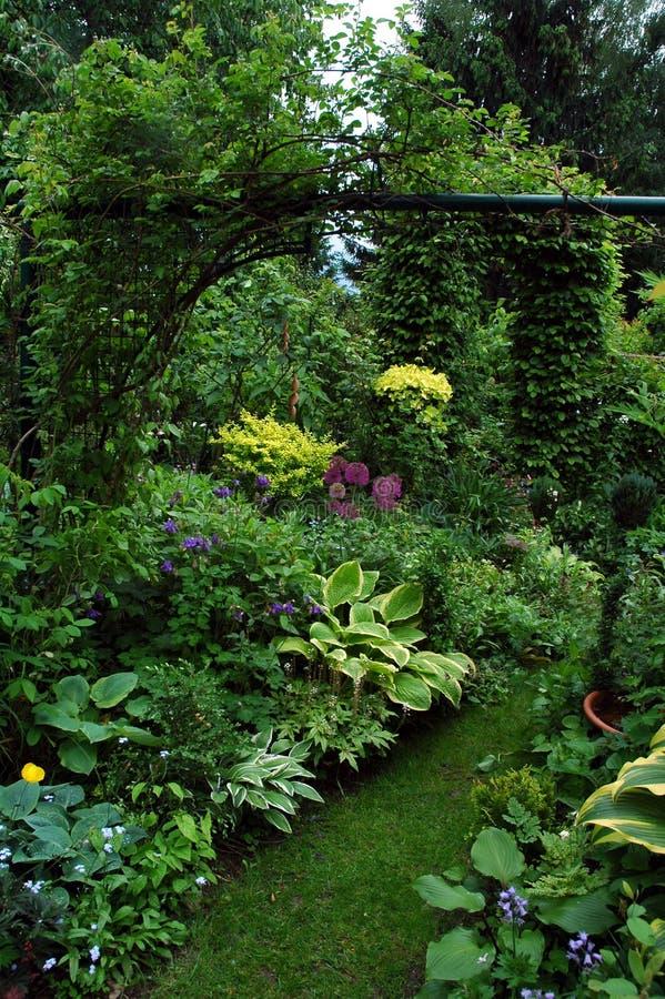 Plantas del grupo en el lugar del jardín de la sombra foto de archivo libre de regalías