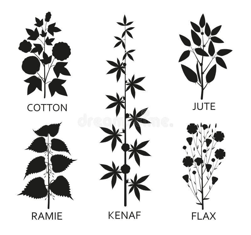 Plantas do algodão, do ramie, do cânhamo, do jude e do linho com folhas, vagens e flores ilustração do vetor