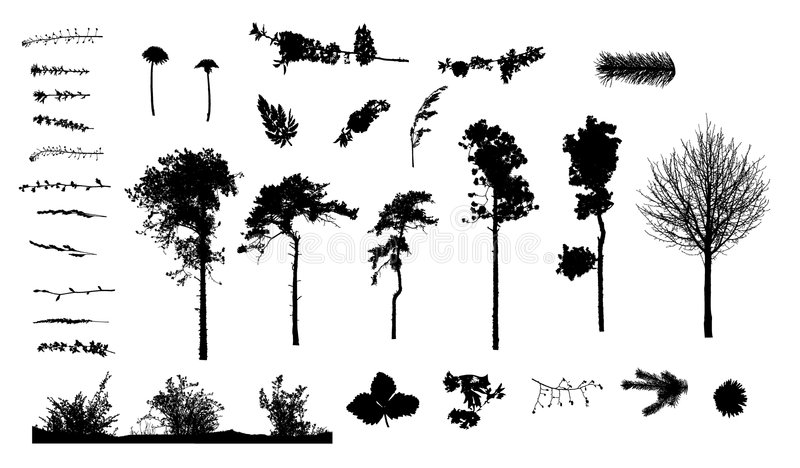 Plantas e silhuetas das árvores ilustração do vetor