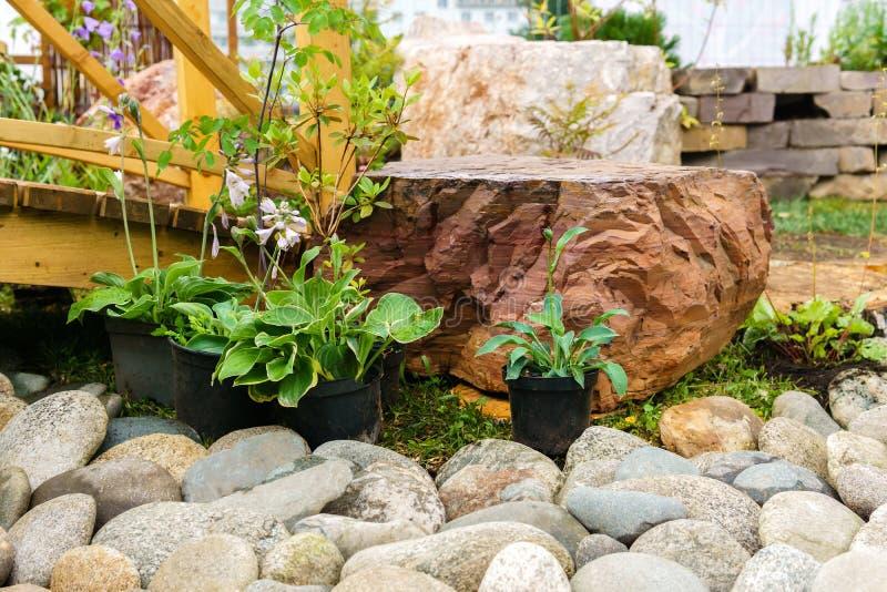 Plantas em pasta decorativas preparadas plantando na terra aberta fotografia de stock royalty free