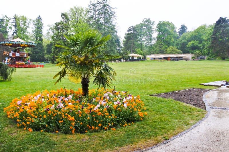 Plantas em um jardim botânico em Genebra imagens de stock royalty free