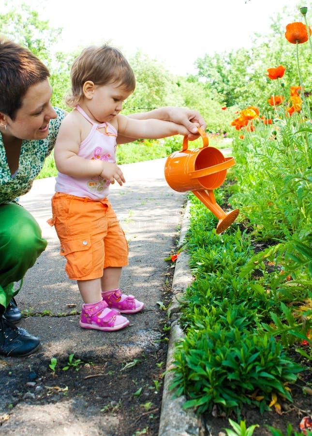 Plantas molhando da matriz e da filha imagem de stock royalty free