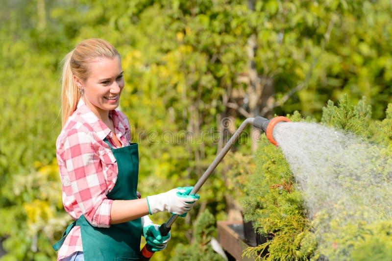 Plantas molhando da mulher do Garden Center com mangueira fotos de stock royalty free
