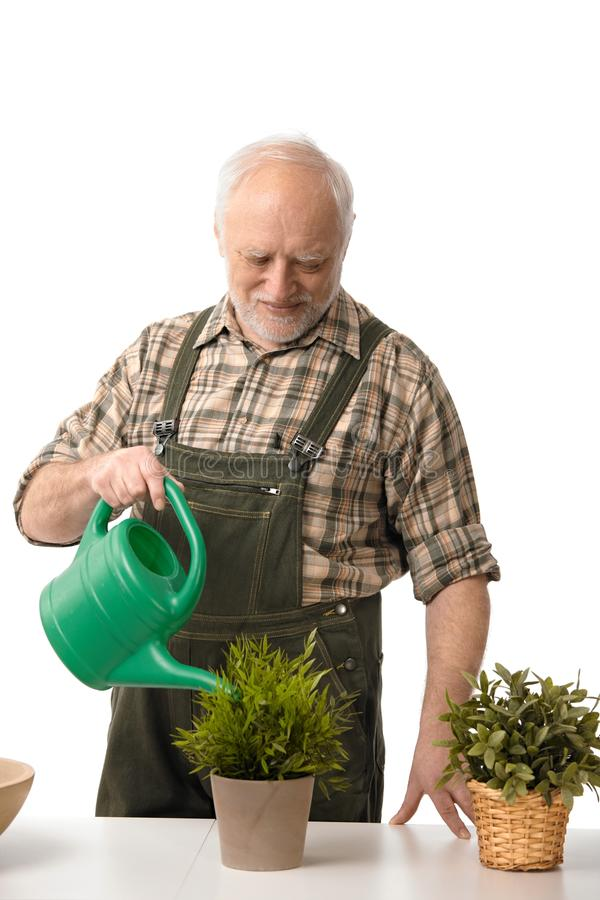 Plantas molhando do homem idoso fotos de stock royalty free