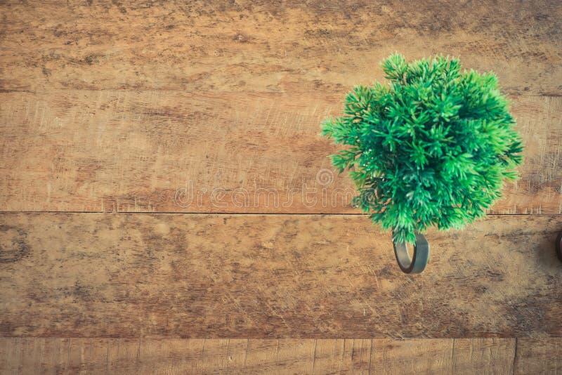 Plantas naturales en el fondo de madera del vintage texturizado foto de archivo