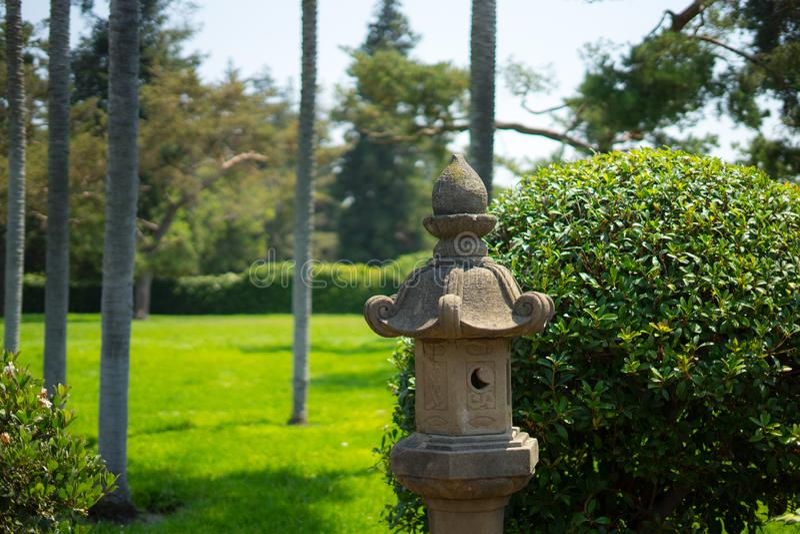 Plantas no jardim japonês foto de stock royalty free