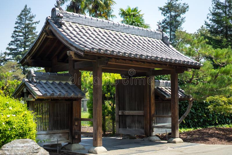 Plantas no jardim japonês imagens de stock