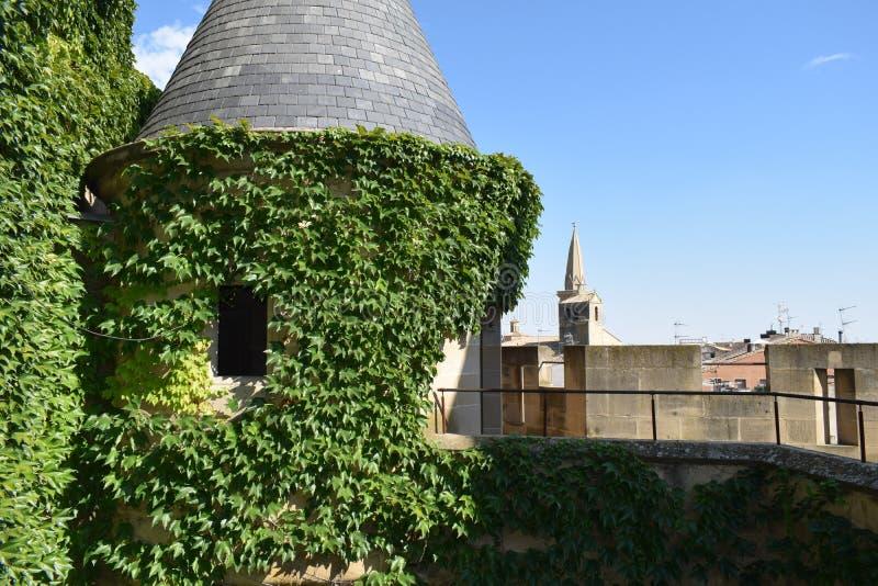 Plantas que abraçam o castelo foto de stock